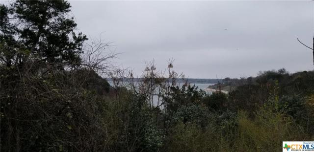 unknown Wild Wood, Belton, TX 76513 (MLS #371451) :: Erin Caraway Group