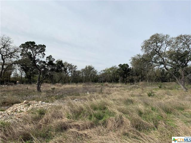 5717 Dry Comal Drive #4, New Braunfels, TX 78132 (#371463) :: Realty Executives - Town & Country