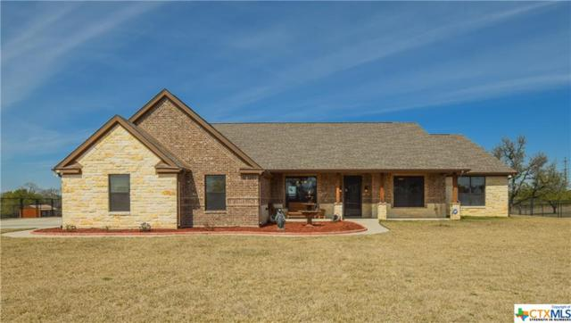 672 Magnolia, Killeen, TX 76549 (MLS #371657) :: The Graham Team