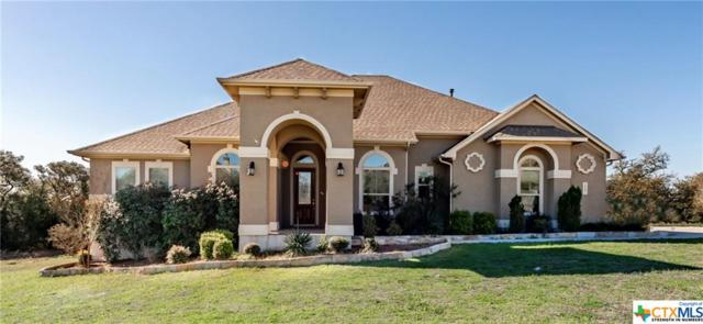 1537 Tramonto, New Braunfels, TX 78132 (MLS #371674) :: Erin Caraway Group