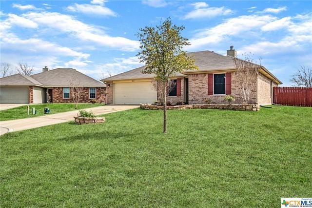 4611 Stonehaven Drive, Temple, TX 76502 (#371831) :: 12 Points Group