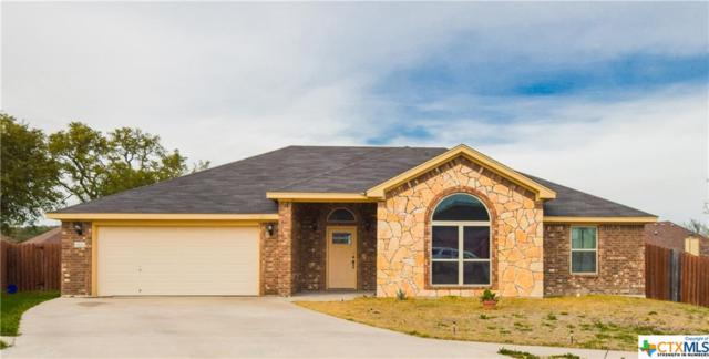 5503 NE Daniel Adam Court, Killeen, TX 76543 (MLS #371858) :: The Graham Team
