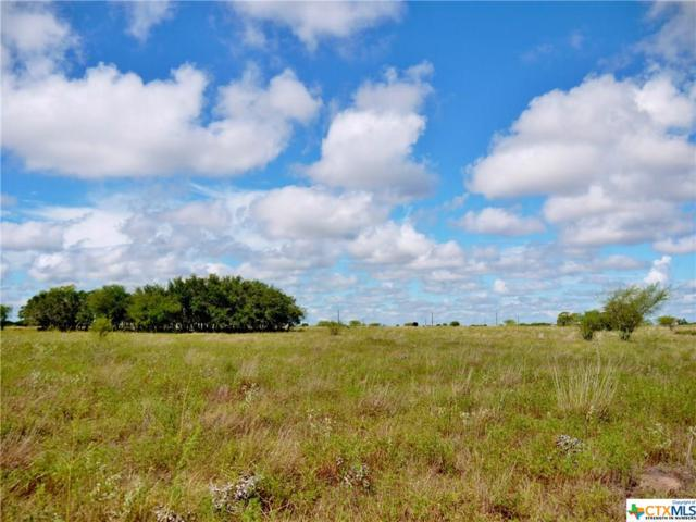 Highway 77 Tract 63 Weeping Willow Rd, Victoria, TX 77904 (MLS #371865) :: Berkshire Hathaway HomeServices Don Johnson, REALTORS®
