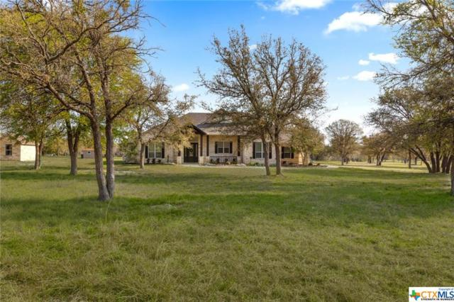 2086 Cheyenne Pass, Salado, TX 76571 (#371909) :: Realty Executives - Town & Country