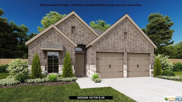 428 Lacey Oak Loop, San Marcos, TX 78666 (MLS #371911) :: Erin Caraway Group