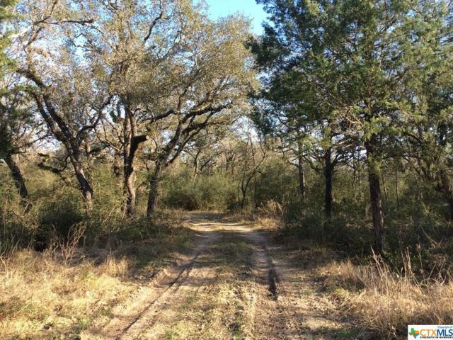 1317 Bischoff, Inez, TX 77968 (MLS #371990) :: RE/MAX Land & Homes