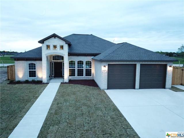 107 Andrea Ct, Victoria, TX 77904 (MLS #372045) :: RE/MAX Land & Homes