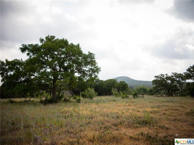 3401 C Fm 2325, Wimberley, TX 78676 (MLS #372100) :: Magnolia Realty