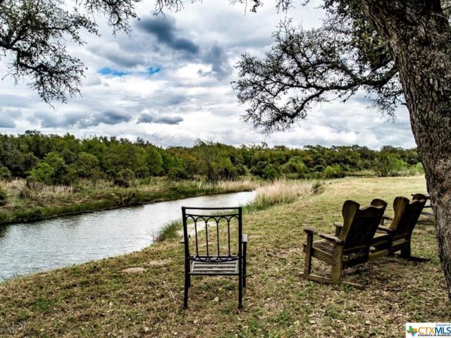 911 Wheeler Lane, Goliad, TX 77963 (MLS #372273) :: The Zaplac Group
