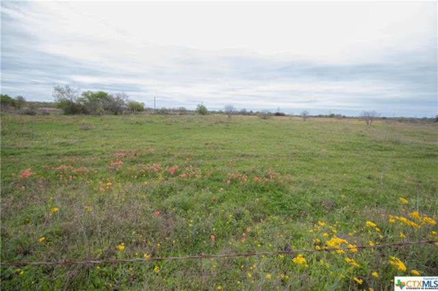 TBD (20 Acres) St Hwy 97 E Highway, Floresville, TX 78114 (MLS #372396) :: Kopecky Group at RE/MAX Land & Homes