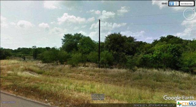 000 S Hwy 59 Highway, Goliad, TX 77905 (MLS #372513) :: RE/MAX Land & Homes