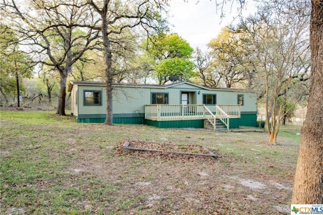 3922 Hickory Forrest, Seguin, TX 78155 (MLS #372549) :: Magnolia Realty