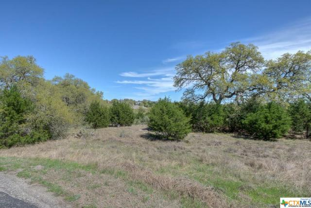 1208 Lot-333 Chablis, New Braunfels, TX 78132 (MLS #372565) :: Vista Real Estate