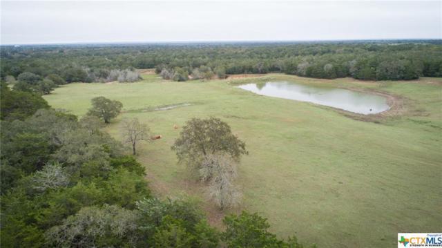 14199 E State Highway 97, Waelder, TX 78959 (MLS #372599) :: Magnolia Realty