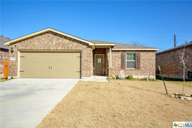 9006 Misty Pine, Temple, TX 76502 (#372618) :: 12 Points Group