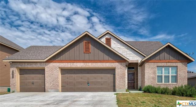 5309 Othello Drive, Belton, TX 76513 (#372633) :: Realty Executives - Town & Country