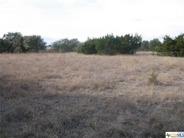 LOT N Jesse Stiff, Blanco, TX 78606 (MLS #372670) :: Magnolia Realty