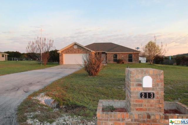 213 County Road 4709, Kempner, TX 76539 (MLS #372811) :: RE/MAX Land & Homes