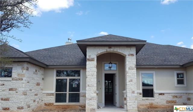 924 Escada, Spring Branch, TX 78070 (MLS #372826) :: RE/MAX Land & Homes