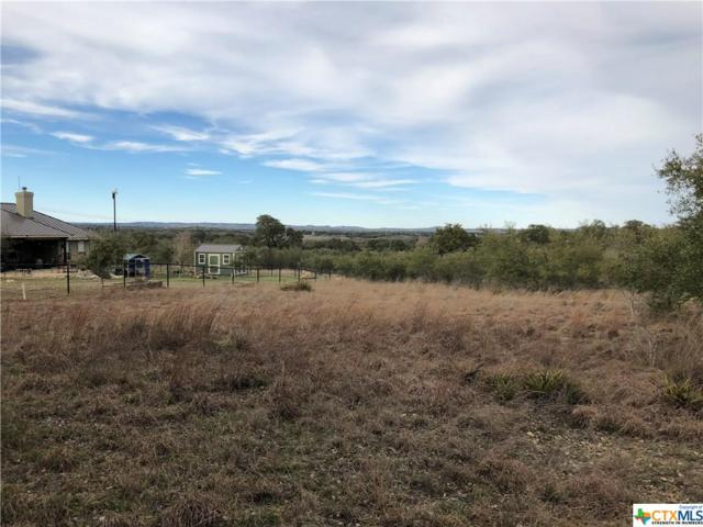 Lot 1081 Roy Nichols, Blanco, TX 78606 (MLS #372847) :: RE/MAX Land & Homes