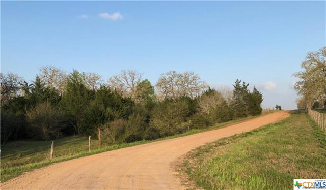 000 County Road 136 A, Hallettsville, TX 77964 (MLS #372946) :: RE/MAX Land & Homes