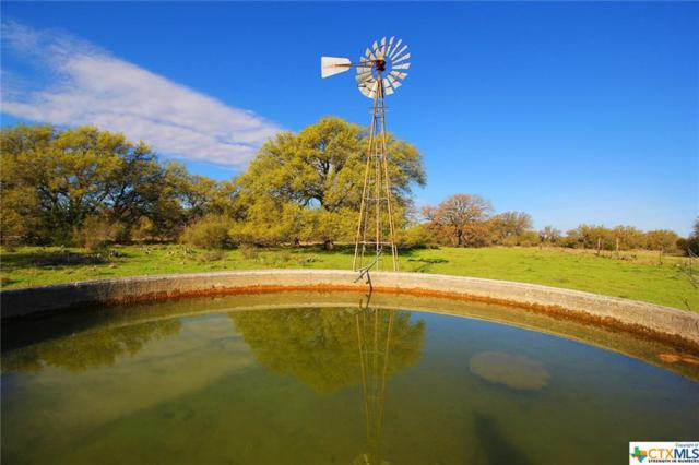 29980 Hwy 71 W, Horseshoe Bay, TX 78657 (MLS #372998) :: The Zaplac Group
