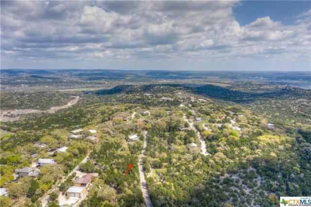 1809 Trail Pass Drive, Canyon Lake, TX 78133 (MLS #373044) :: Magnolia Realty