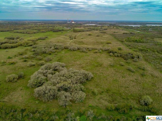12587 Hwy 59 S, Goliad, TX 77906 (MLS #373074) :: The Zaplac Group