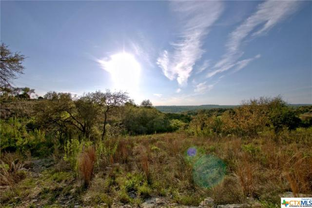162 and 187 Zinnia, Spring Branch, TX 78070 (MLS #373102) :: The i35 Group