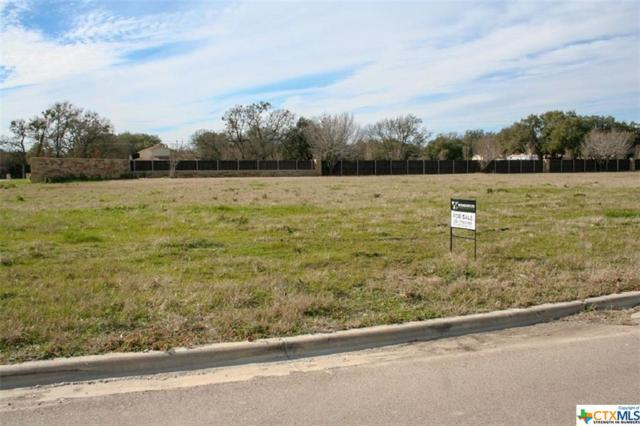 814 Norfolk Drive, Temple, TX 76502 (MLS #373118) :: The Zaplac Group