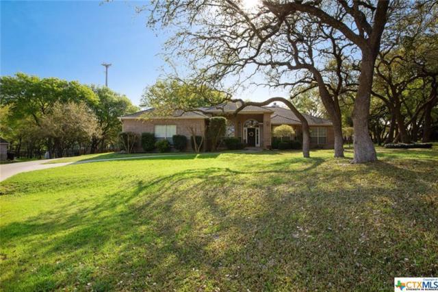 11 Coletto Court, Belton, TX 76513 (MLS #373292) :: Brautigan Realty