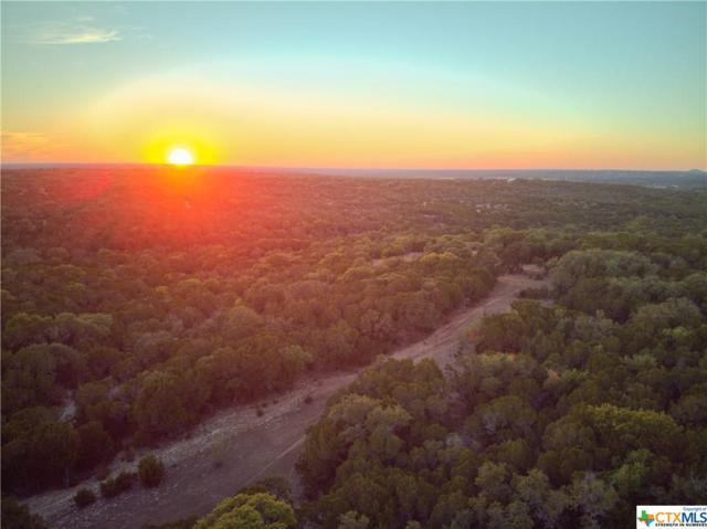 722 County Rd 220, Killeen, TX 76549 (MLS #373406) :: Vista Real Estate