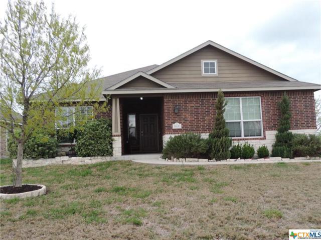 5606 Alexandria Drive, Temple, TX 76502 (MLS #373457) :: Erin Caraway Group