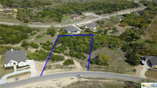 1394 Merlot View, New Braunfels, TX 78132 (MLS #373469) :: Vista Real Estate