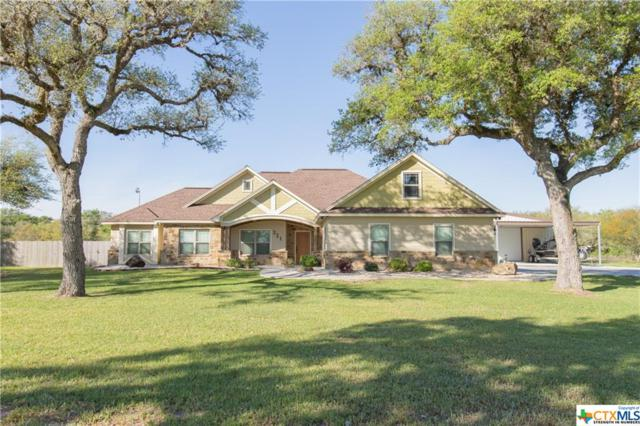 321 Pura Vida, Inez, TX 77968 (MLS #374019) :: The Zaplac Group
