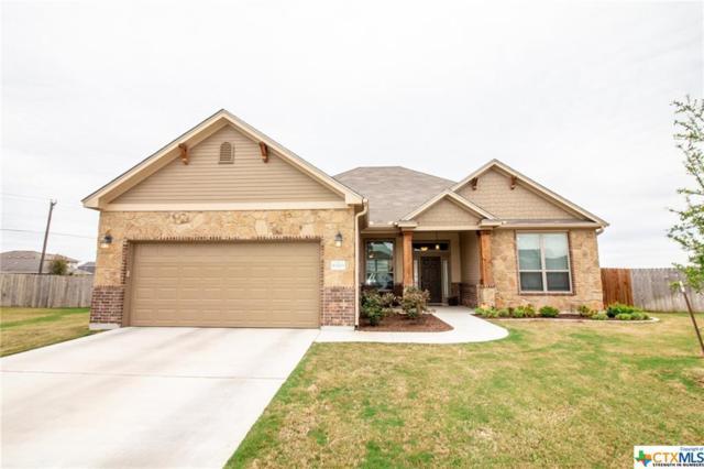10203 Alamosa Lane, Temple, TX 76502 (MLS #374020) :: Brautigan Realty