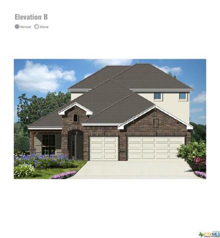 3618 Clear Cloud, New Braunfels, TX 78130 (MLS #374058) :: Erin Caraway Group