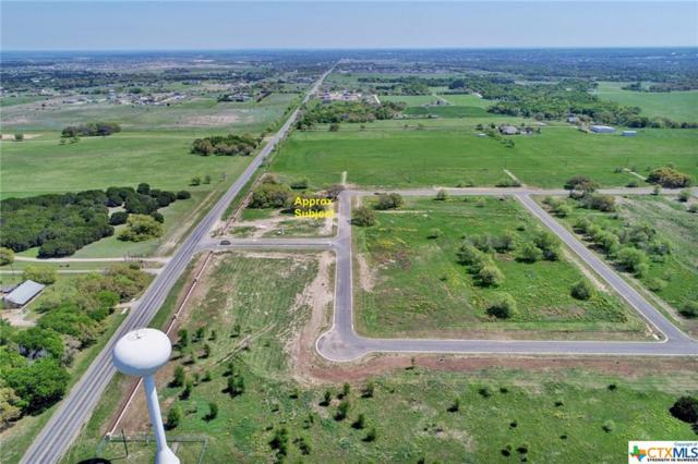 8200 Collins Creek Drive, Salado, TX 76571 (MLS #374097) :: Erin Caraway Group