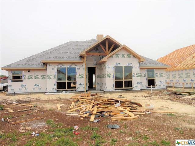 2503 Emerald Dove Drive, Temple, TX 76502 (MLS #374268) :: Vista Real Estate