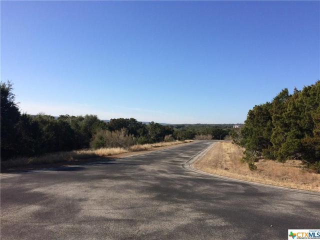 120 Sierra Way, Canyon Lake, TX 78133 (MLS #374271) :: Erin Caraway Group