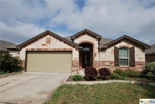 1428 Star Meadow, Kyle, TX 78640 (MLS #374309) :: Erin Caraway Group