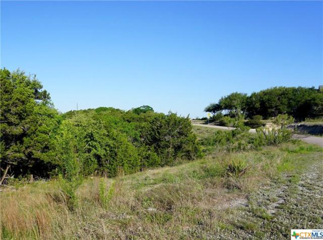 632 Angelica Vista, Canyon Lake, TX 78133 (MLS #374371) :: Erin Caraway Group