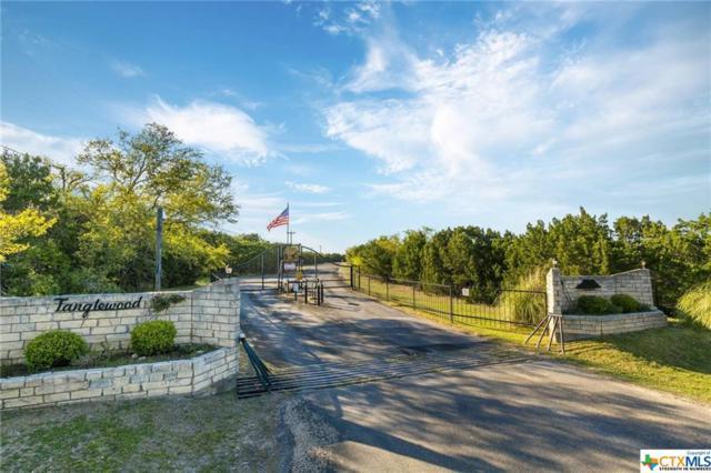 16142 Salado Drive, Temple, TX 76502 (MLS #374398) :: Brautigan Realty