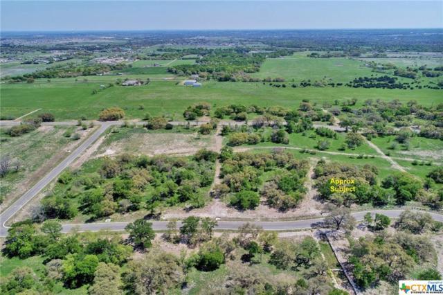 8391 Spring Creek Loop, Salado, TX 76571 (MLS #374408) :: Vista Real Estate