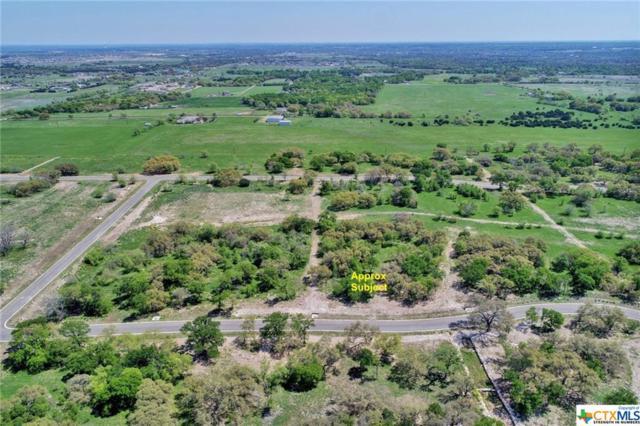8379 Spring Creek Loop, Salado, TX 76571 (MLS #374412) :: RE/MAX Family