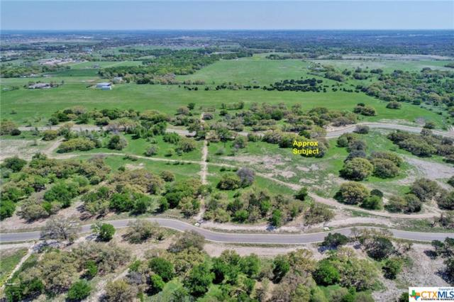 8367 Spring Creek Loop, Salado, TX 76571 (MLS #374414) :: Erin Caraway Group