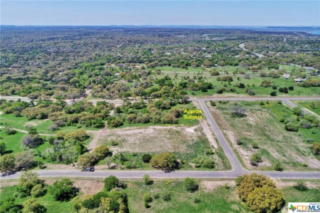 8419 Spring Creek Loop, Salado, TX 76571 (MLS #374416) :: Erin Caraway Group