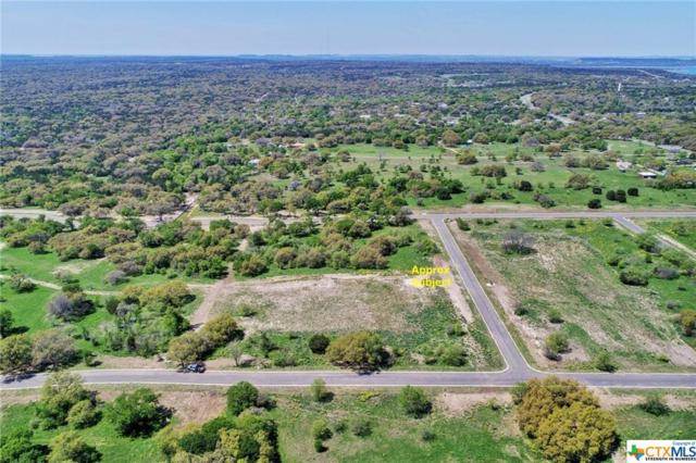 8413 Spring Creek Loop, Salado, TX 76571 (MLS #374417) :: Erin Caraway Group