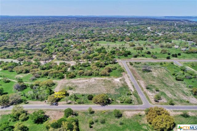 8499 Spring Creek Loop, Salado, TX 76571 (MLS #374424) :: Erin Caraway Group