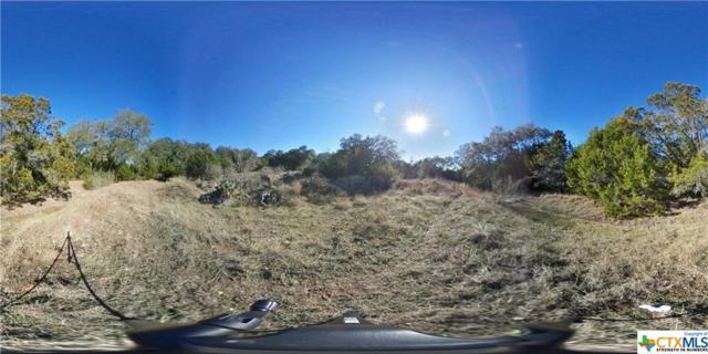 202 Woodcock Lane, Canyon Lake, TX 78133 (MLS #374480) :: Magnolia Realty